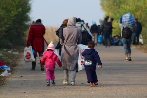 flyktningpolitikk